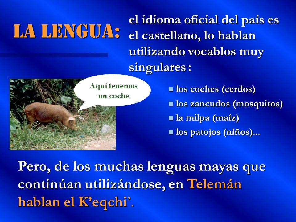 La lengua: el idioma oficial del país es el castellano, lo hablan utilizando vocablos muy singulares: los coches (cerdos) los coches (cerdos) los zanc