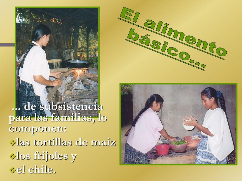 ... de subsistencia para las familias, lo componen:... de subsistencia para las familias, lo componen: las tortillas de maíz las tortillas de maíz los