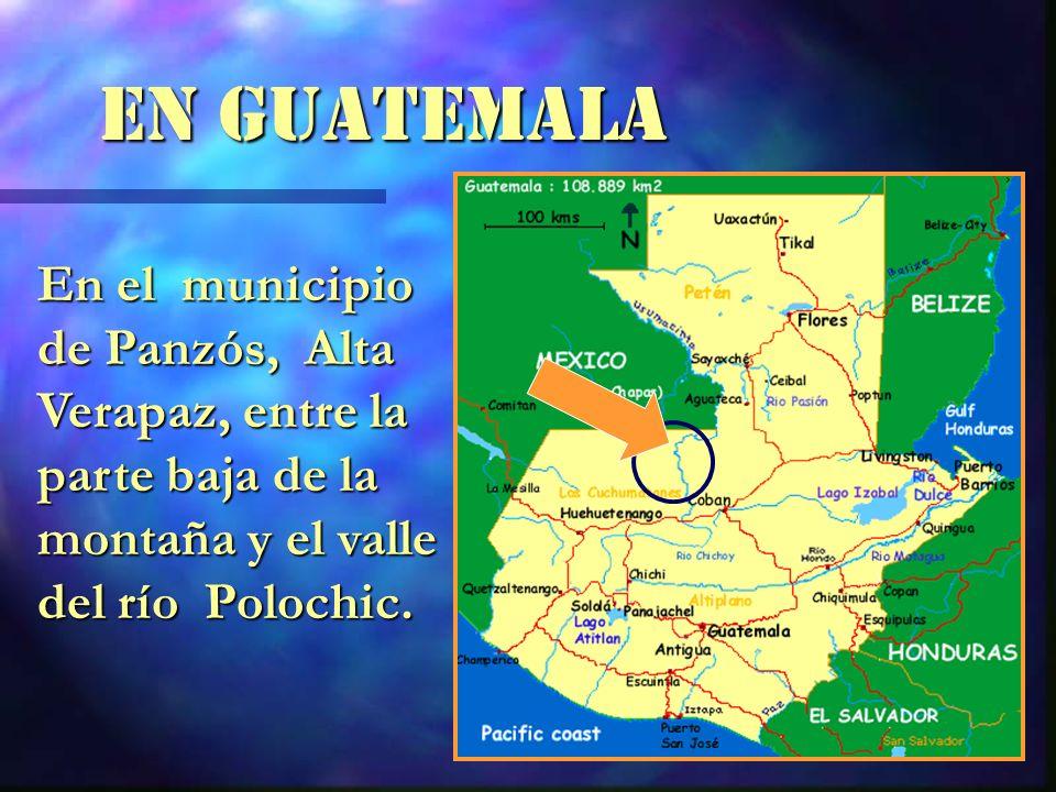 En GUATEMALA En el municipio de Panzós, Alta Verapaz, entre la parte baja de la montaña y el valle del río Polochic.