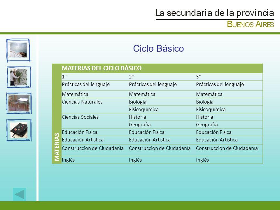 MATERIAS MATERIAS DEL CICLO BÁSICO 1°2°3° Prácticas del lenguaje Matemática Ciencias NaturalesBiología Fisicoquímica Ciencias SocialesHistoria Geograf