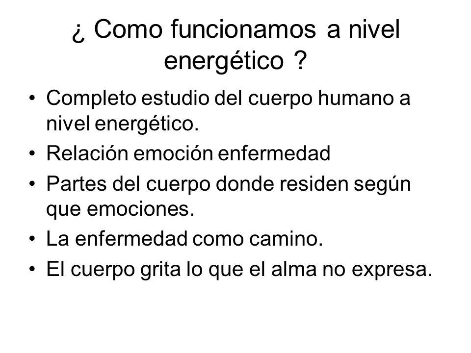 ¿ Como funcionamos a nivel energético ? Completo estudio del cuerpo humano a nivel energético. Relación emoción enfermedad Partes del cuerpo donde res
