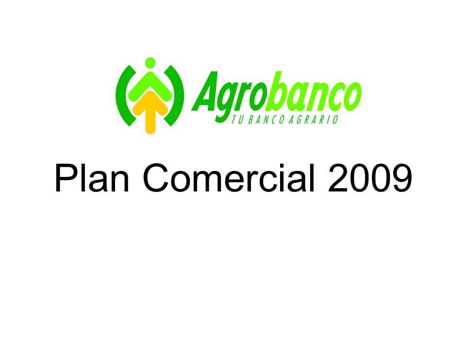 Plan Comercial 2009