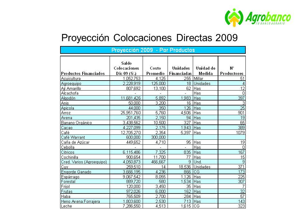 Proyección Colocaciones Directas 2009