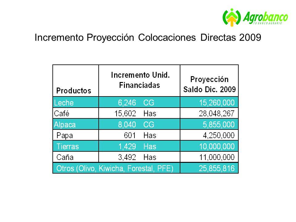 Incremento Proyección Colocaciones Directas 2009