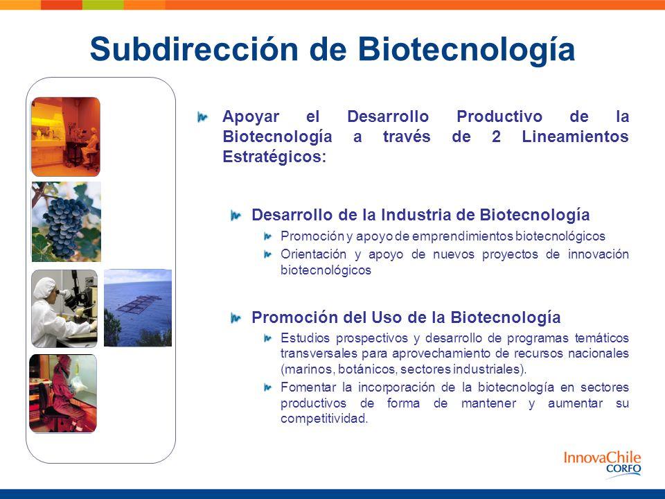 Apoyar el Desarrollo Productivo de la Biotecnología a través de 2 Lineamientos Estratégicos: Desarrollo de la Industria de Biotecnología Promoción y a