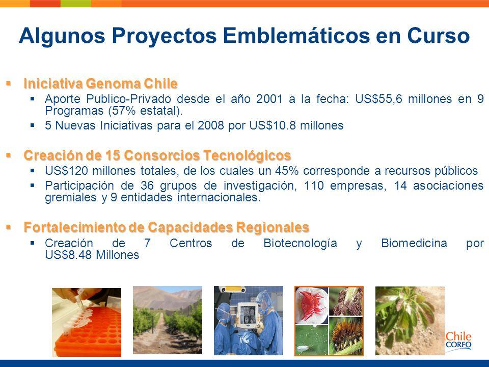 Algunos Proyectos Emblemáticos en Curso Iniciativa Genoma Chile Iniciativa Genoma Chile Aporte Publico-Privado desde el año 2001 a la fecha: US$55,6 m