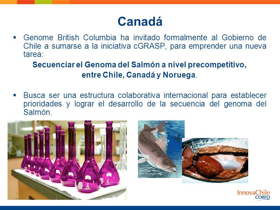 Canadá Genome British Columbia ha invitado formalmente al Gobierno de Chile a sumarse a la iniciativa cGRASP, para emprender una nueva tarea: Secuenci
