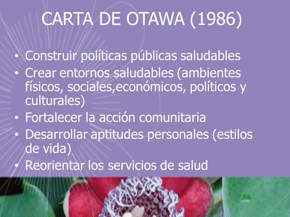 CARTA DE OTAWA (1986) Construir políticas públicas saludables Crear entornos saludables (ambientes físicos, sociales,económicos, políticos y culturales) Fortalecer la acción comunitaria Desarrollar aptitudes personales (estilos de vida) Reorientar los servicios de salud