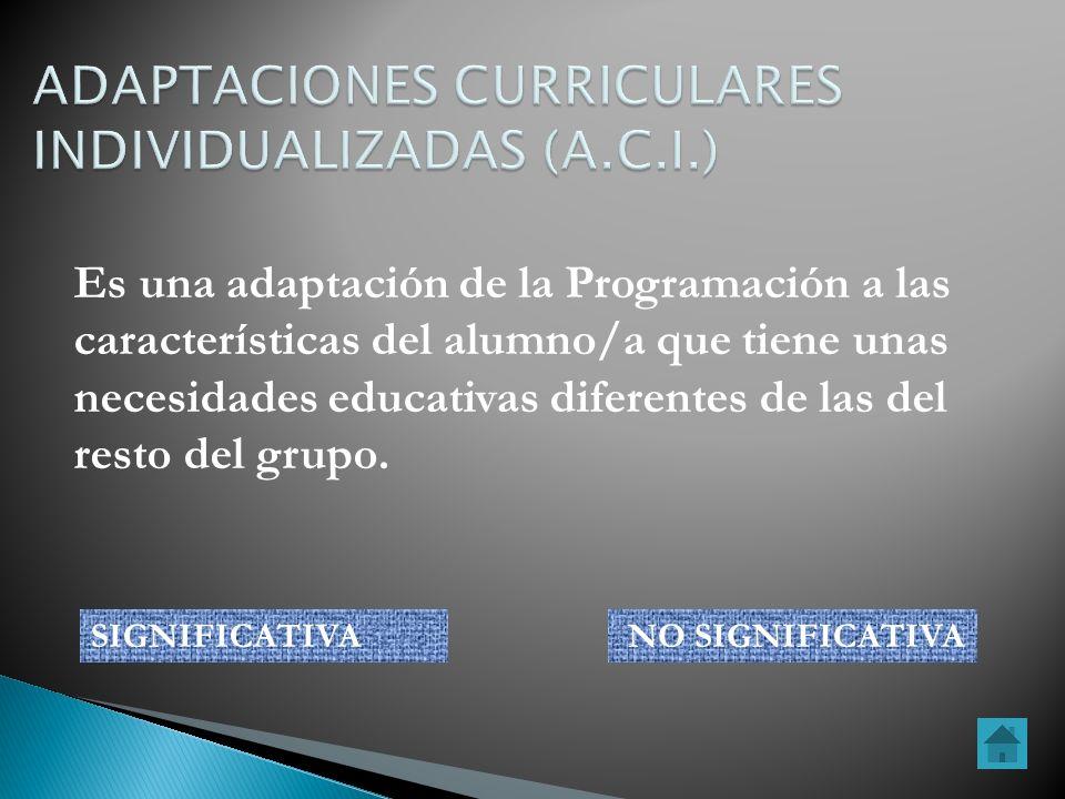 Es una adaptación de la Programación a las características del alumno/a que tiene unas necesidades educativas diferentes de las del resto del grupo. S