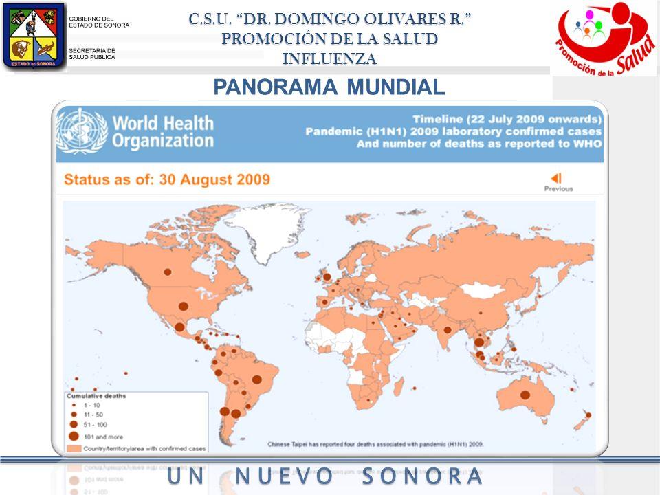 C.S.U. DR. DOMINGO OLIVARES R. PROMOCIÓN DE LA SALUD INFLUENZA UN NUEVO SONORA PANORAMA MUNDIAL