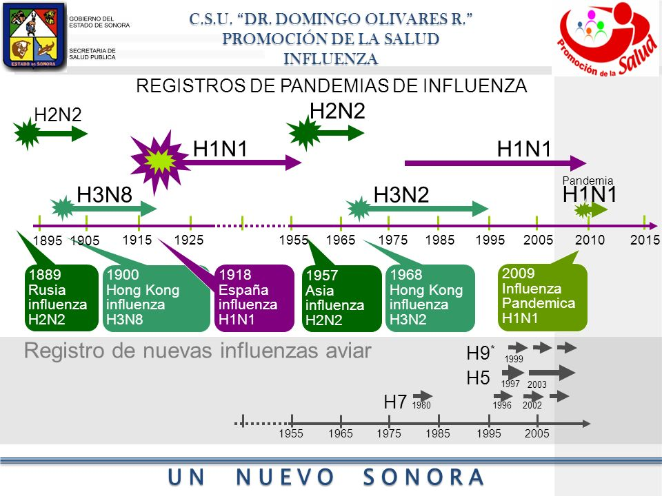 C.S.U. DR. DOMINGO OLIVARES R. PROMOCIÓN DE LA SALUD INFLUENZA UN NUEVO SONORA