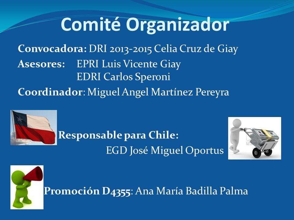 Comité Organizador Convocadora: DRI 2013-2015 Celia Cruz de Giay Asesores: EPRI Luis Vicente Giay EDRI Carlos Speroni Coordinador: Miguel Angel Martín
