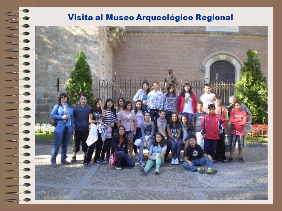 Visita al Museo Arqueológico Regional