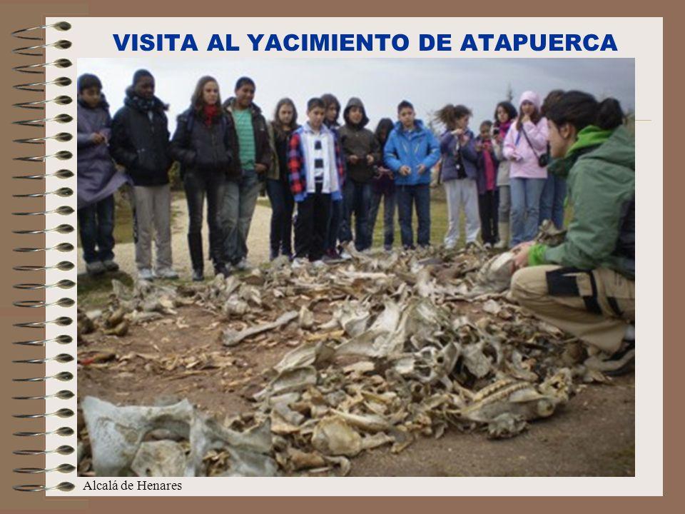 C/Senda perdida s/n Alcalá de Henares VISITA AL YACIMIENTO DE ATAPUERCA