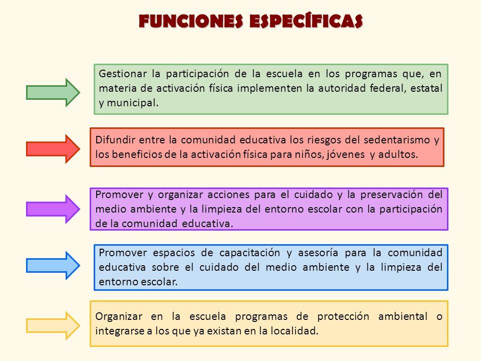 Gestionar la participación de la escuela en los programas que, en materia de activación física implementen la autoridad federal, estatal y municipal.