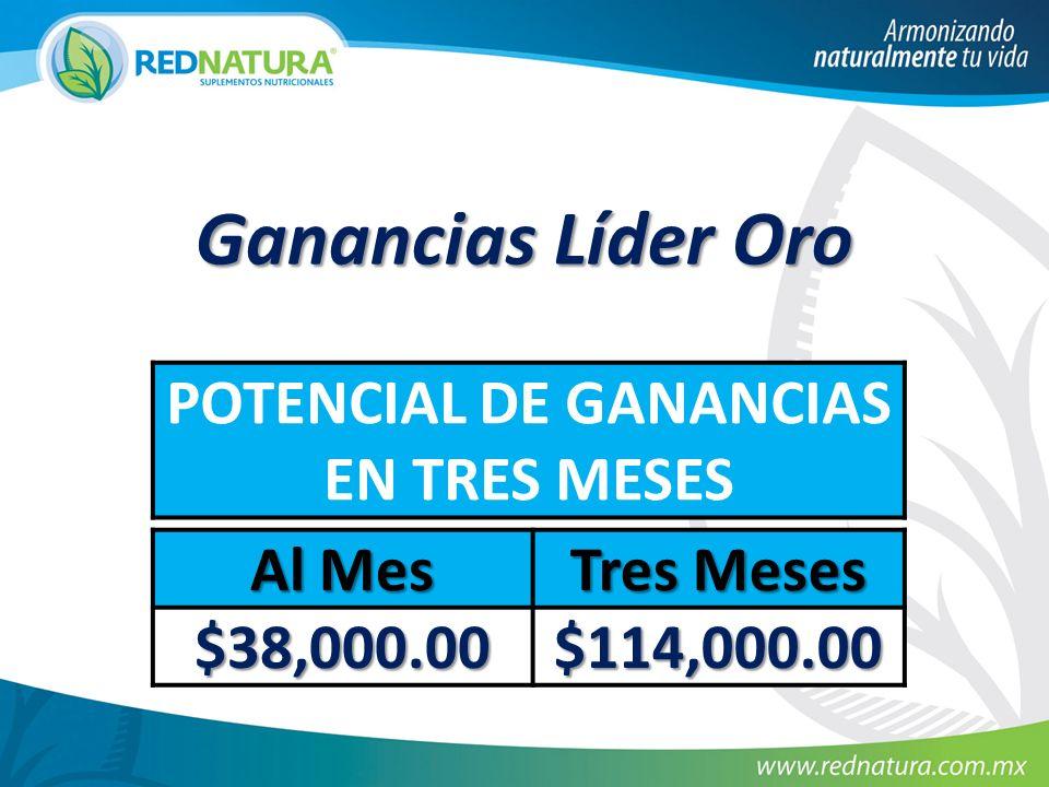 Ganancias Líder Oro POTENCIAL DE GANANCIAS EN TRES MESES Al Mes Tres Meses $38,000.00 $114,000.00