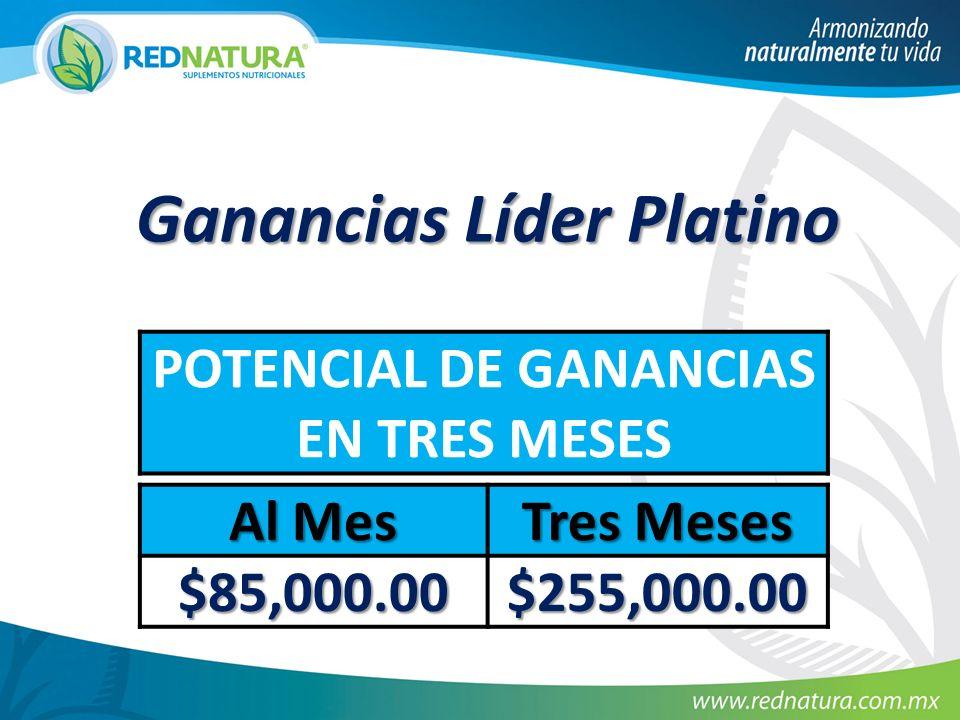 Ganancias Líder Platino POTENCIAL DE GANANCIAS EN TRES MESES Al Mes Tres Meses $85,000.00 $255,000.00