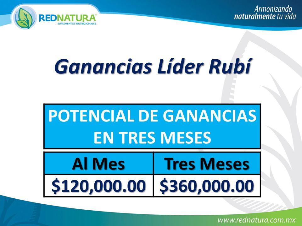 Ganancias Líder Rubí POTENCIAL DE GANANCIAS EN TRES MESES Al Mes Tres Meses $120,000.00 $360,000.00