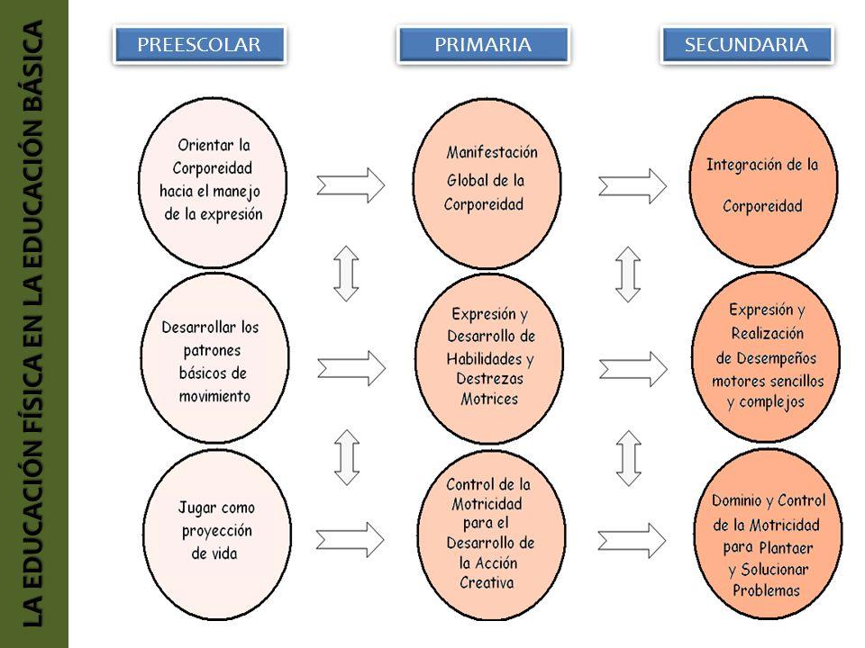 LA EDUCACIÓN FÍSICA EN LA EDUCACIÓN BÁSICA PREESCOLAR PRIMARIA SECUNDARIA