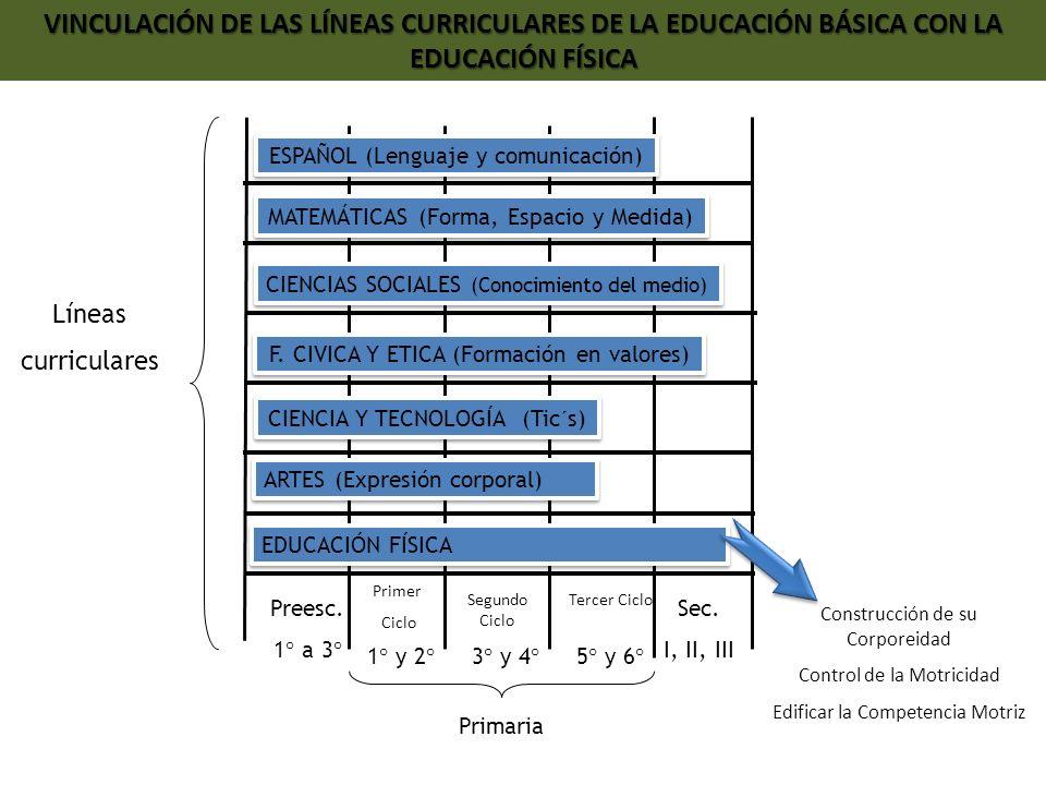 Preesc. 1° a 3° 1° y 2°3° y 4°5° y 6° Sec. I, II, III Primaria Líneas curriculares ESPAÑOL (Lenguaje y comunicación) MATEMÁTICAS (Forma, Espacio y Med