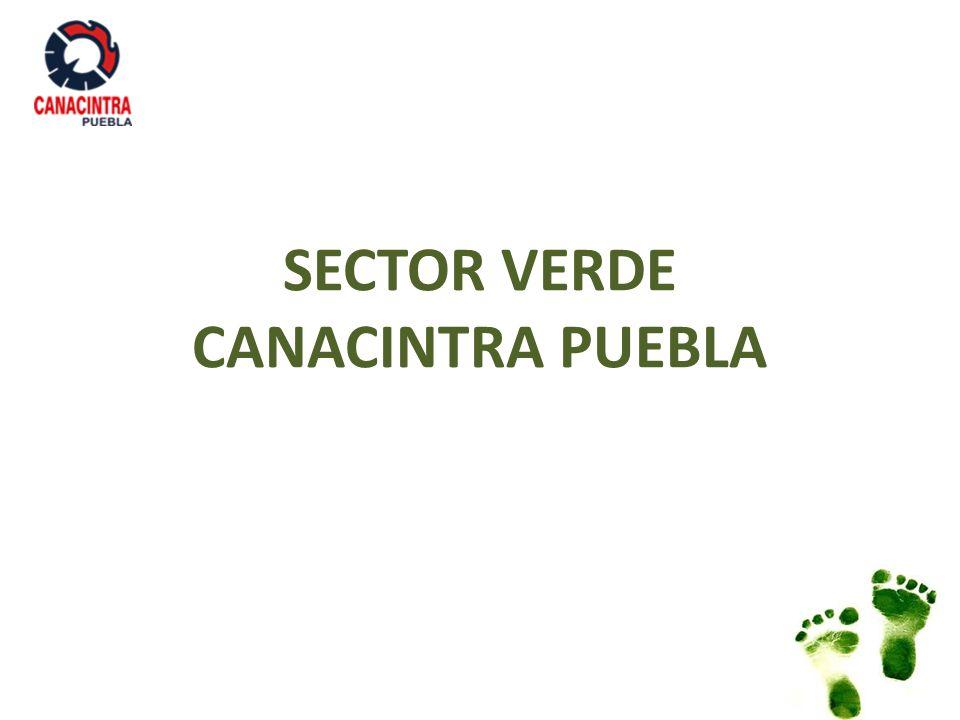 PLAN DE TRABAJO 2013 – 2014 Integración del Sector Verde Elaboración del Diagnóstico de problemática, necesidades empresariales y capacitación del sector en CANACINTRA Puebla.