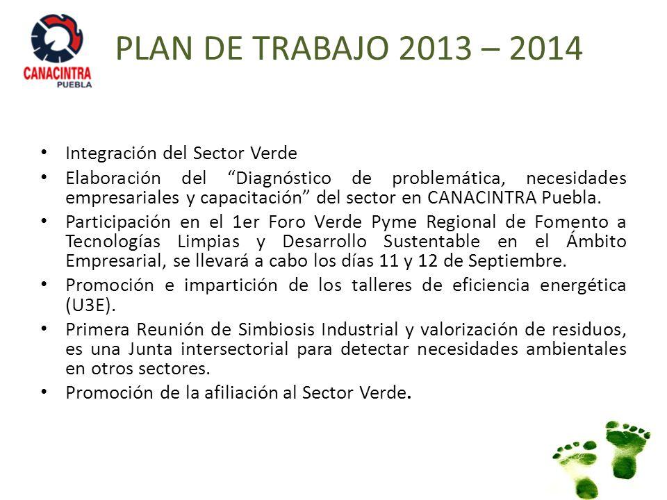 PLAN DE TRABAJO 2013 – 2014 Integración del Sector Verde Elaboración del Diagnóstico de problemática, necesidades empresariales y capacitación del sec