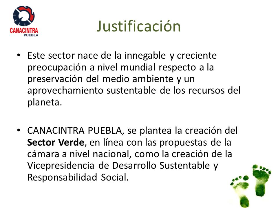 Justificación Este sector nace de la innegable y creciente preocupación a nivel mundial respecto a la preservación del medio ambiente y un aprovechami
