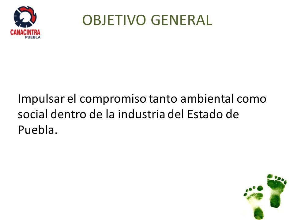 OBJETIVOS PARTICULARES Impulsar un nuevo segmento de negocios en el interior de CANACINTRA relacionado con la protección del medio ambiente y la sustentabilidad.