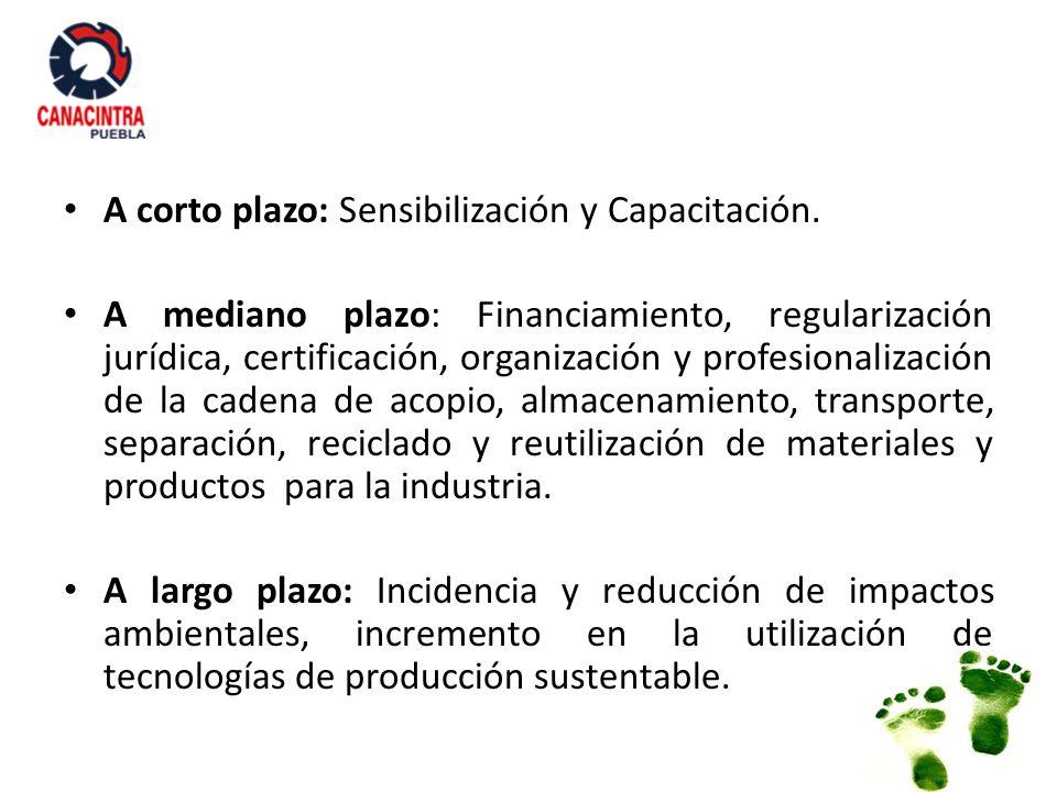 A corto plazo: Sensibilización y Capacitación. A mediano plazo: Financiamiento, regularización jurídica, certificación, organización y profesionalizac