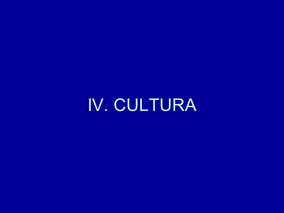 IV. CULTURA