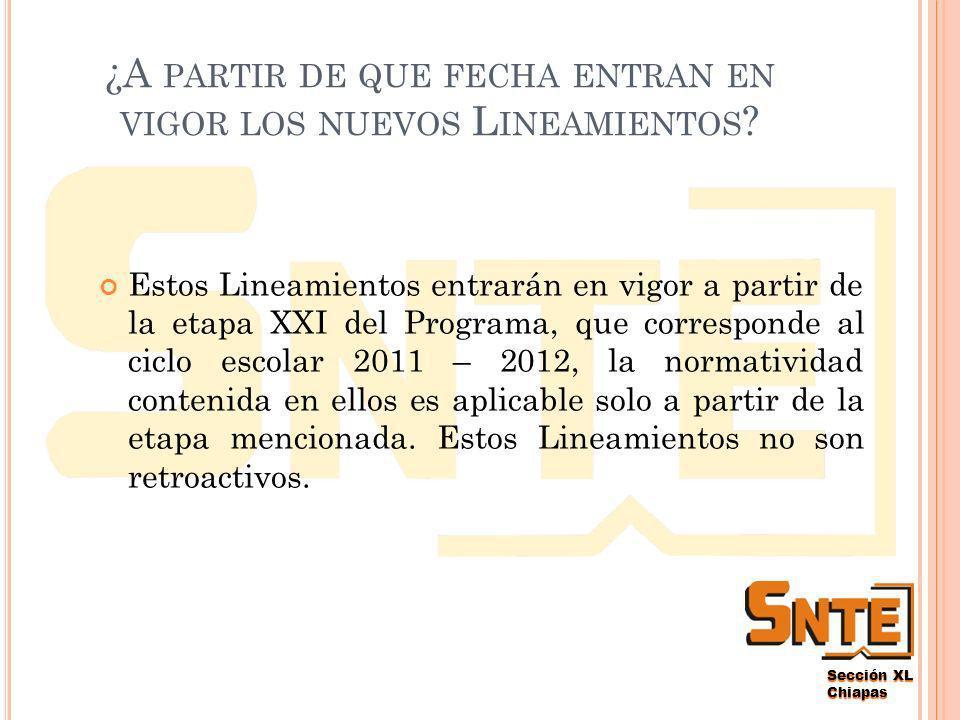 Sección XL Chiapas ¿P OR QUÉ NUEVOS LINEAMIENTOS .