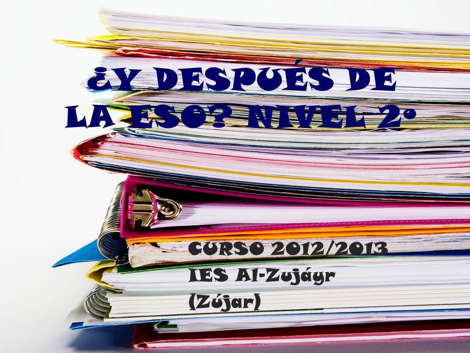 ¿Y DESPUÉS DE LA ESO? NIVEL 2º CURSO 2012/2013 IES Al-Zujáyr (Zújar)