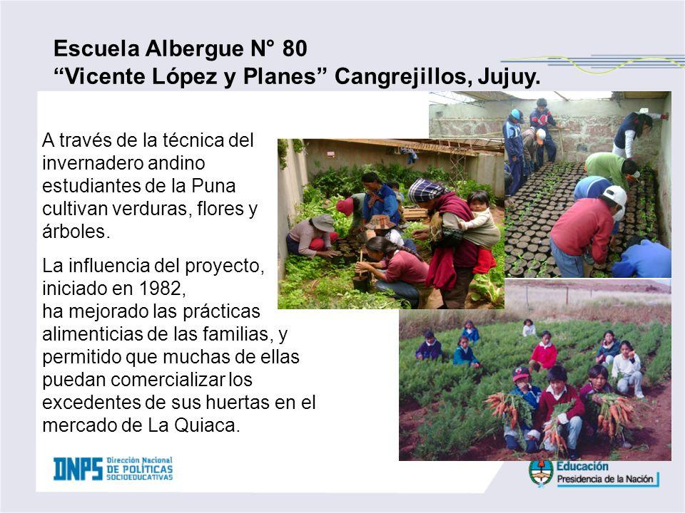 Escuela Albergue N° 80 Vicente López y Planes Cangrejillos, Jujuy. A través de la técnica del invernadero andino estudiantes de la Puna cultivan verdu