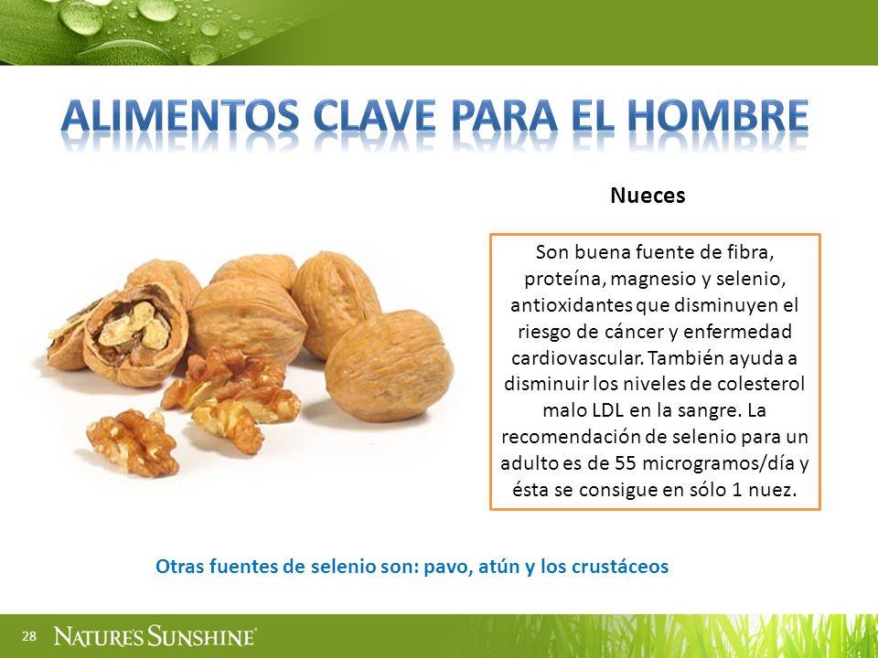 28 Nueces Son buena fuente de fibra, proteína, magnesio y selenio, antioxidantes que disminuyen el riesgo de cáncer y enfermedad cardiovascular. Tambi