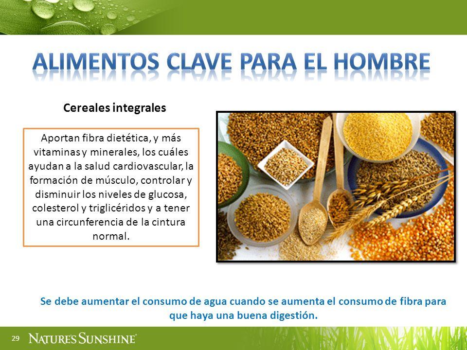 29 Cereales integrales Aportan fibra dietética, y más vitaminas y minerales, los cuáles ayudan a la salud cardiovascular, la formación de músculo, con