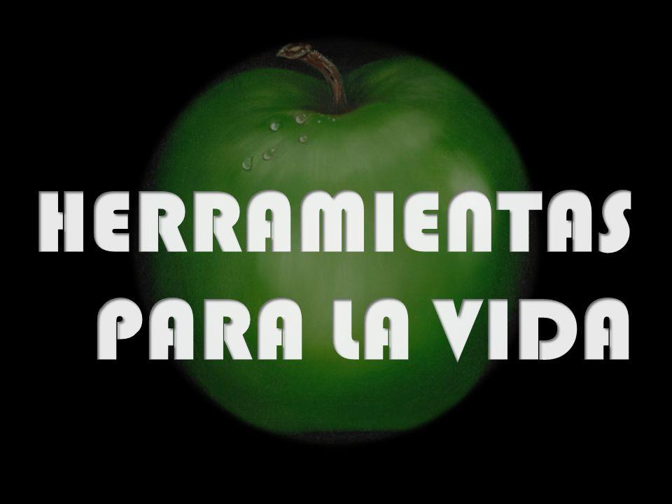 PROFUNDIZAR EL APRENDIZAJE DE LAS CIENCIAS Y LAS MATEMATICAS FORTALECER LA FORMACION AMBIENTAL PARA PROTEGER Y CONSERVAR LA NATURALEZA PROMOCIÓN DE PRÁCTICAS, HÁBITOS Y PROCEDIMIENTOS PARA EL RESPETO DE LA DIGNIDAD HUMANA FOMENTAR EL USO PEDAGOGICO DE LA INFORMATICA Y LA COMUNICACIÓN LEER, ESCRIBIR Y HABLAR CORRECTAMENTE PARA COMPRENDER EL MUNDO