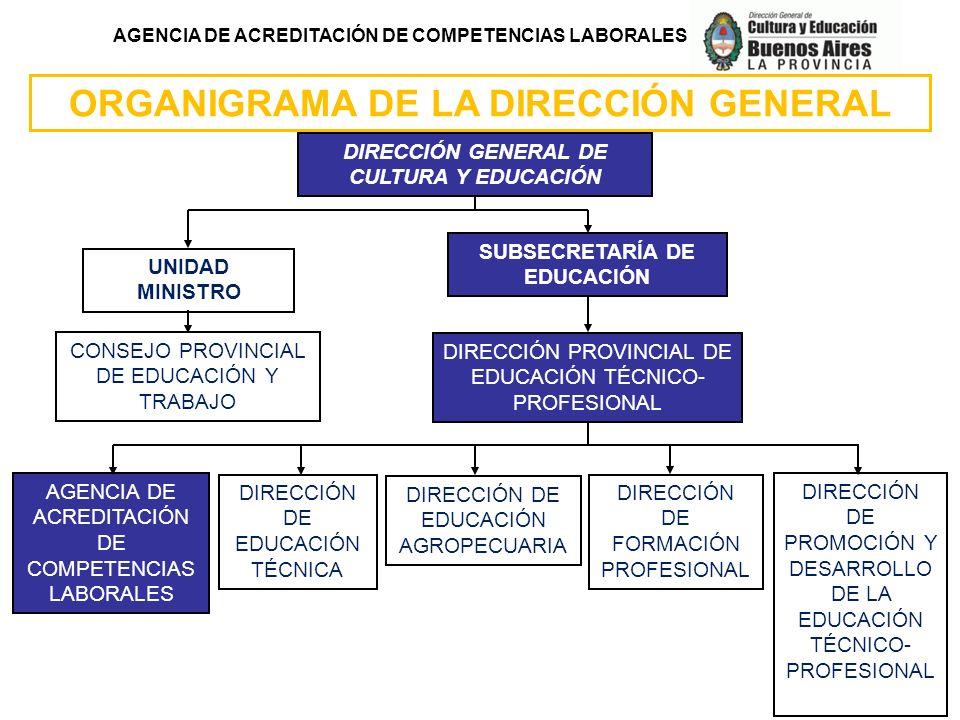 AGENCIA DE ACREDITACIÓN DE COMPETENCIAS LABORALES ORGANIGRAMA DE LA DIRECCIÓN GENERAL DIRECCIÓN PROVINCIAL DE EDUCACIÓN TÉCNICO- PROFESIONAL DIRECCIÓN