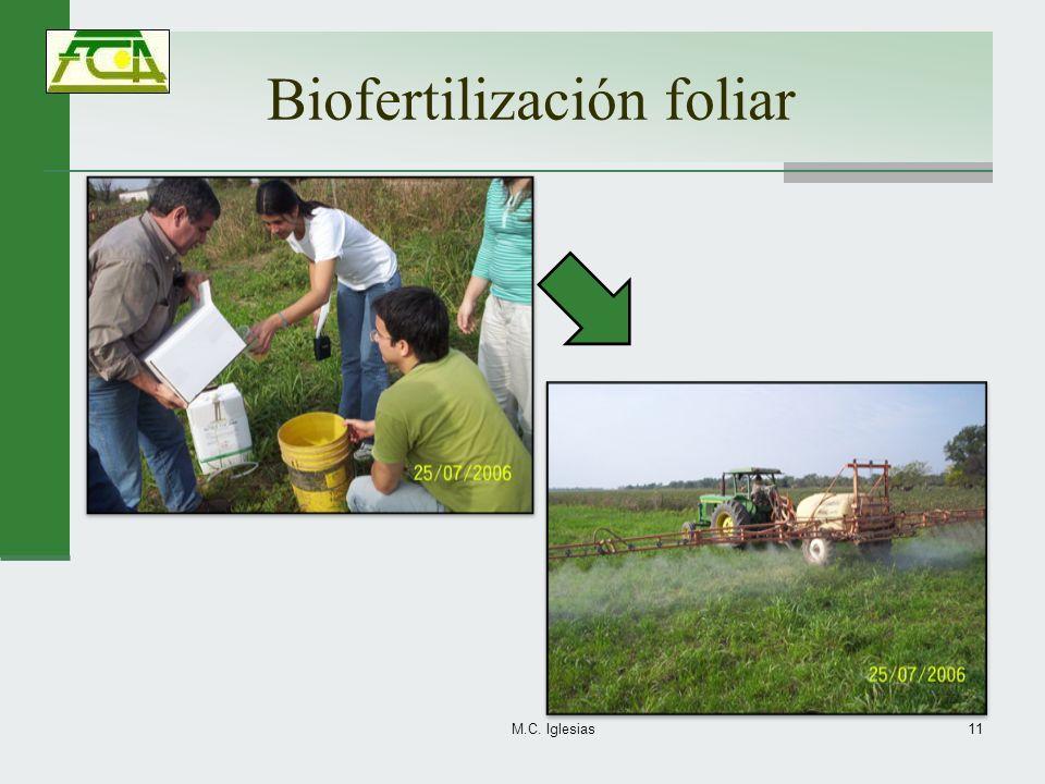 Biofertilización foliar M.C. Iglesias11