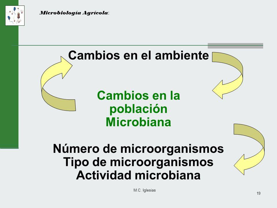 M.C. Iglesias 19 Microbiología Agrícola : Cambios en el ambiente Cambios en la población Microbiana Número de microorganismos Tipo de microorganismos