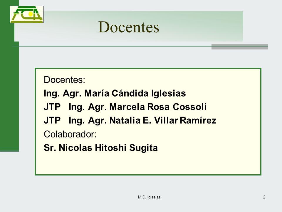 Docentes Docentes: Ing. Agr. María Cándida Iglesias JTP Ing. Agr. Marcela Rosa Cossoli JTP Ing. Agr. Natalia E. Villar Ramírez Colaborador: Sr. Nicola