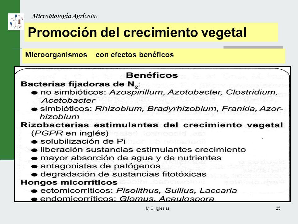 M.C. Iglesias25 Microbiología Agrícola : Promoción del crecimiento vegetal Microorganismos con efectos benéficos