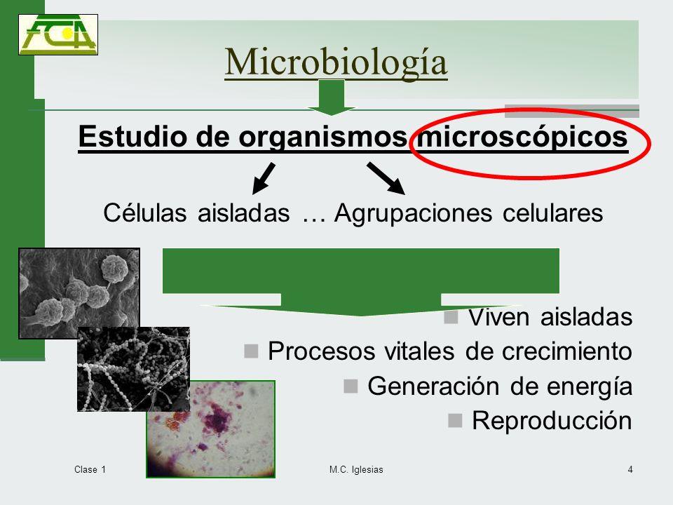 Microbiología Estudio de organismos microscópicos Células aisladas … Agrupaciones celulares Viven aisladas Procesos vitales de crecimiento Generación