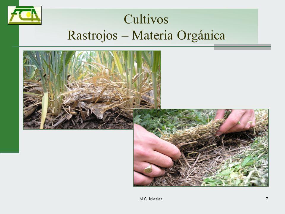 Cultivos Rastrojos – Materia Orgánica M.C. Iglesias7