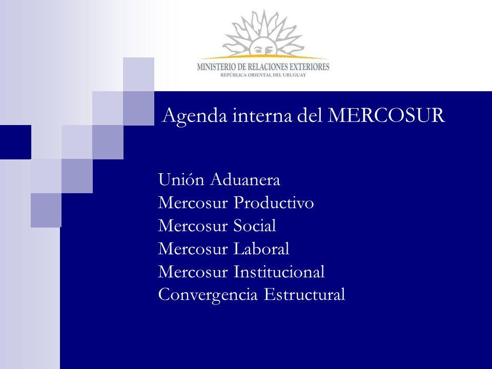 Agenda interna del MERCOSUR Unión Aduanera Mercosur Productivo Mercosur Social Mercosur Laboral Mercosur Institucional Convergencia Estructural