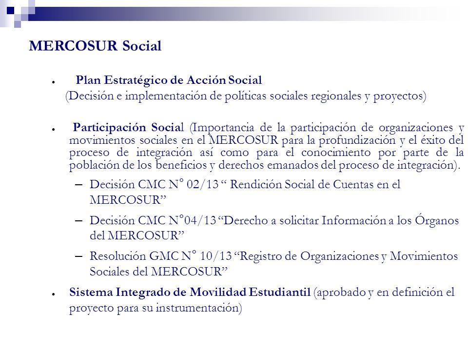 MERCOSUR Social Plan Estratégico de Acción Social (Decisión e implementación de políticas sociales regionales y proyectos) Participación Social (Impor