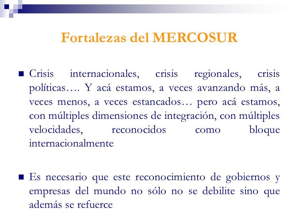 Fortalezas del MERCOSUR Crisis internacionales, crisis regionales, crisis políticas…. Y acá estamos, a veces avanzando más, a veces menos, a veces est