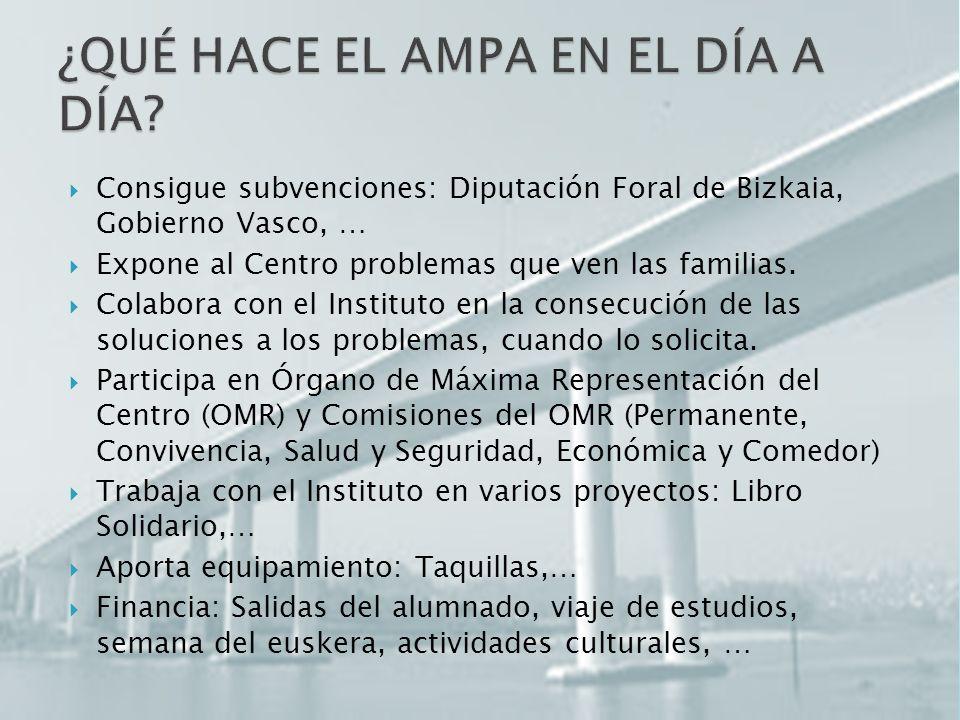 Consigue subvenciones: Diputación Foral de Bizkaia, Gobierno Vasco, … Expone al Centro problemas que ven las familias.