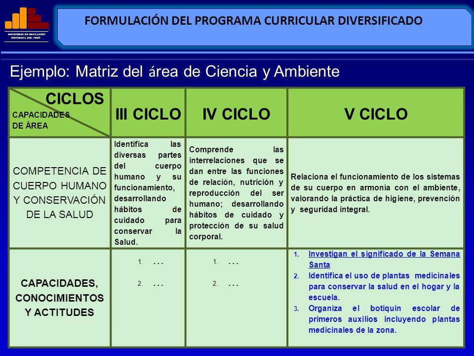 MINISTERIO DE EDUCACIÓN REPÚBLICA DEL PERÚ FORMULACIÓN DEL PROGRAMA CURRICULAR DIVERSIFICADO CICLOS CAPACIDADES DE ÁREA III CICLOIV CICLOV CICLO COMPE