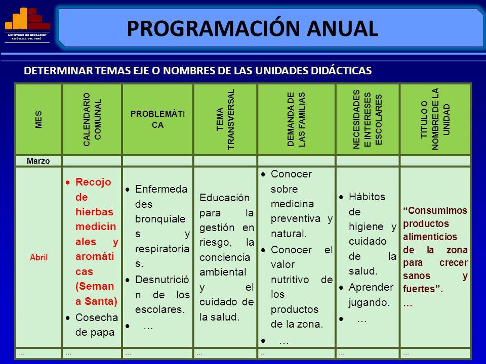 MINISTERIO DE EDUCACIÓN REPÚBLICA DEL PERÚ PROGRAMACIÓN ANUAL MES CALENDARIO COMUNAL PROBLEMÁTI CA TEMA TRANSVERSAL DEMANDA DE LAS FAMILIAS NECESIDADE