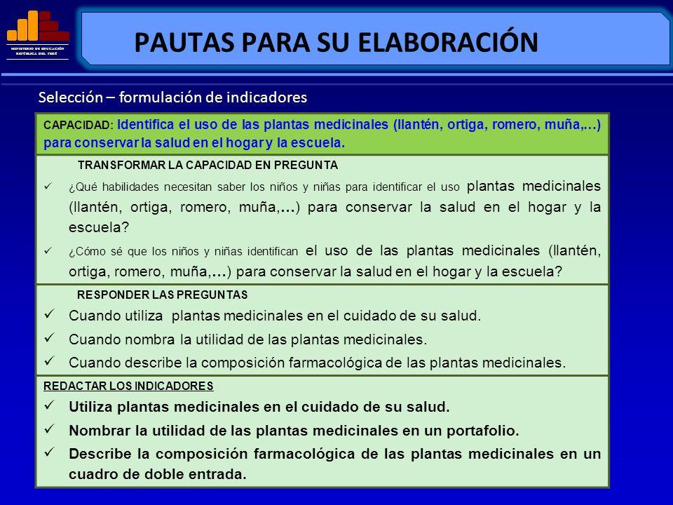 MINISTERIO DE EDUCACIÓN REPÚBLICA DEL PERÚ PAUTAS PARA SU ELABORACIÓN Selección – formulación de indicadores CAPACIDAD: Identifica el uso de las plant